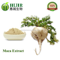 100% natural free sample maca extract powder