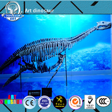 YS88H04 museum Artificial simulation dinosaur skeleton fossils