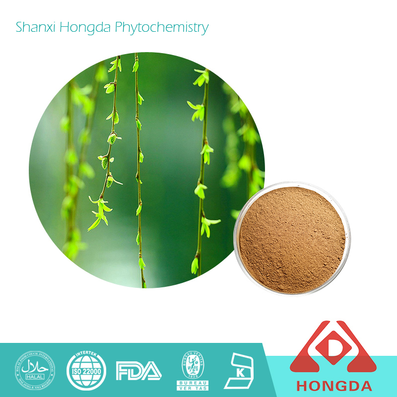Salix alba L. White Willow Bark Extract Powder type and herbal extract type 98% Salicin