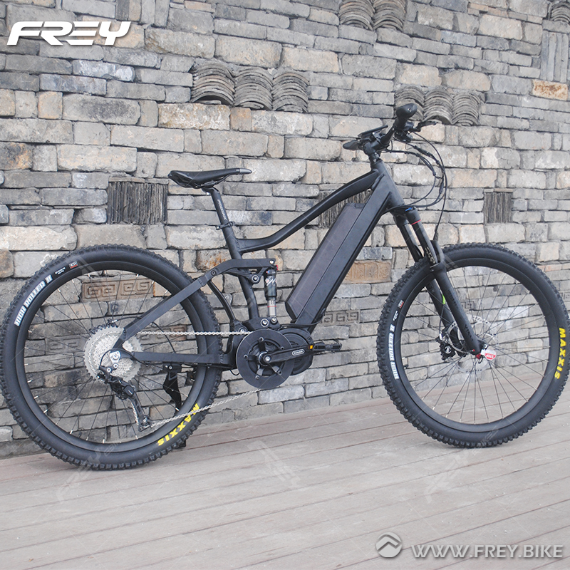 Climbing Downhill Power Assist Electric Motor Bike