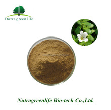 Hot Sale Plant Extract 20%-60% Bacopasides Bacopa Monnieri Extract