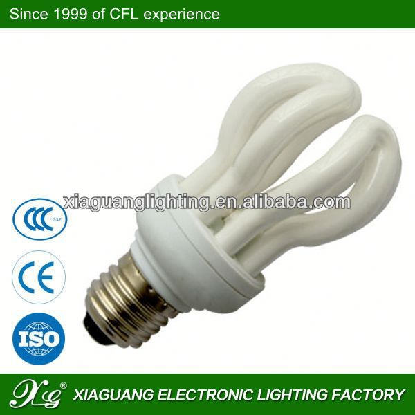 2013 China t10 t5 t8 12v led fluorescent tube/light/ lamp Lotus lamp