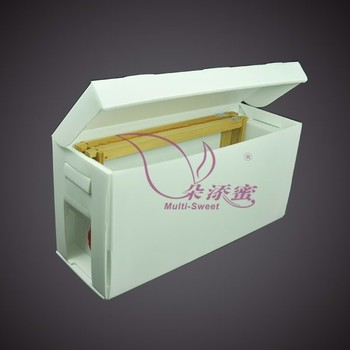high quality Plastic Nuc box Nuc beehive box queen box