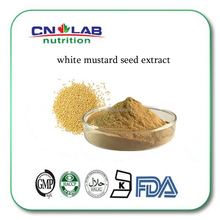 GMP certified mustard seed extract powder/white mustard extract for sale