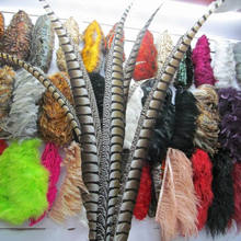 Manufacture supplier Dyed Lady Amherst Pheasant Tail Feather Zebra for cheap sale