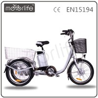 MOTORLIFE/OEM brand EN15194 36v 250w double-wheel cargo tricycle