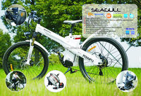 Sport electric bike with 250W brushless gear hub motor,electric air pump for car and bike