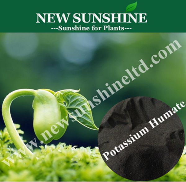 Super grade water soluble potash fertilizer Potassium Humate