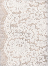 new design fashion thread lace fabric for dress or apparel 25%N 75%C
