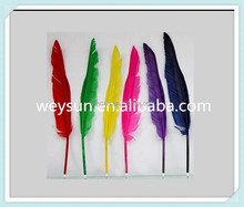 Popular goose quill pen for girls DHL Free Shipping