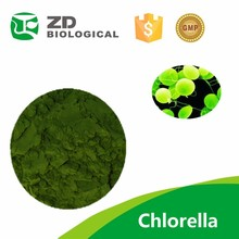 Free samples organic spirulina powder spirulina chlorella powder tablet