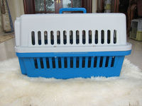 Dog Kennel promotion