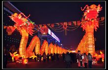 Dragon lantern for Chinese carnival