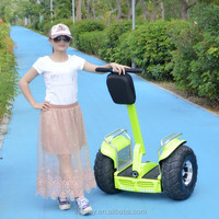 CE approval OEM china cheap 2 wheels electric golf trolley