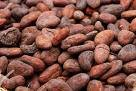 we supply many beans to buyers coffee beans cocoa beans cocoa powder,beans kindly beans,kindly red beans green mung beans