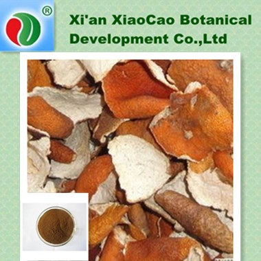 Dried Tangerine Peel Powder,Green Tangerine Peel Extract