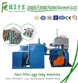 Automatic Popular Egg Tray Machine China