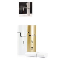 Ce & Rohs High Quality Ms.W Rechargeable Mini Facial Mist Steamer/Nano Facial Sprayer