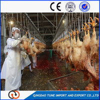 Best quality Stainless steel poultry slaughter equipments dressing line