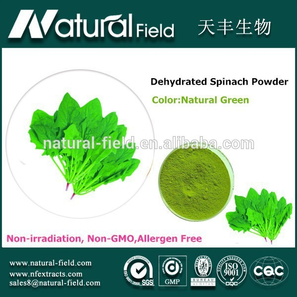 ISO&HACCP Cerfication manufacturer sell spray dried vegetable spice-dried spinach powder