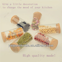55*120mm Glass herb canister with cork in promotion for Christmas