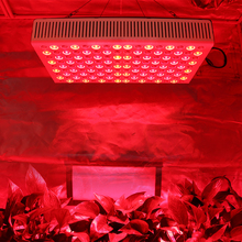 Orchids tissue culture led grow light