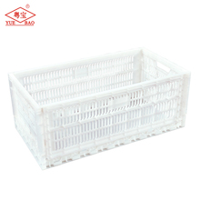 Agricultural equipment plastic chicken cage for sale, chicken cage layer poultry, chicken egg poultry farm