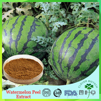 Pure Natural Best/Low price Watermelon Peel extract powder