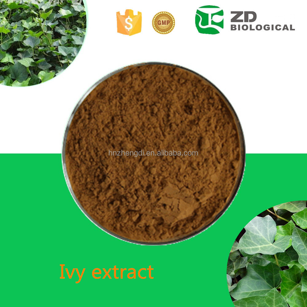 China supplier ivy leaf extract best selling plant extract