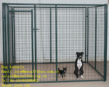 Outdoor application wire welded powder coated finish dog runs