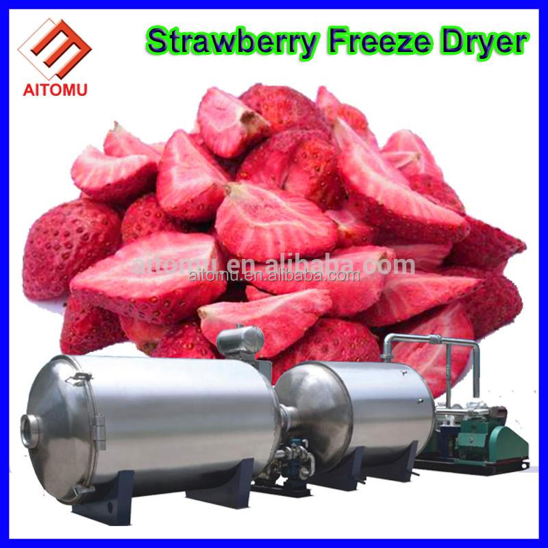 High Quality vacuum freeze drying equipment