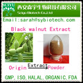 Hot Supply Black Walnut Extract