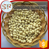 Packing blanched peanuts 1kg price