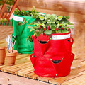 8 Pocket Strawberry Planter Bag,Strawberry Growing Planting Bag,Strawberry Planter