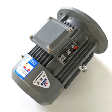 Manufacturer electric vehicle ac motor