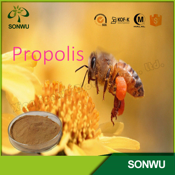 High quality bee propolis/propolis powder