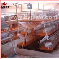 China Supplies Wholesale Automatic Rabbit Farm For Sale(A type,for sale,Made in China)