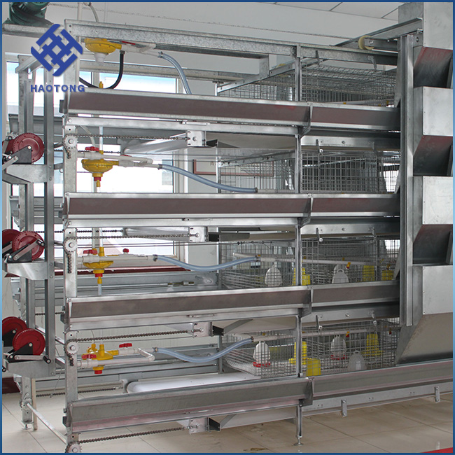 Factory price poultry farms automatic equipment layer chicken cage