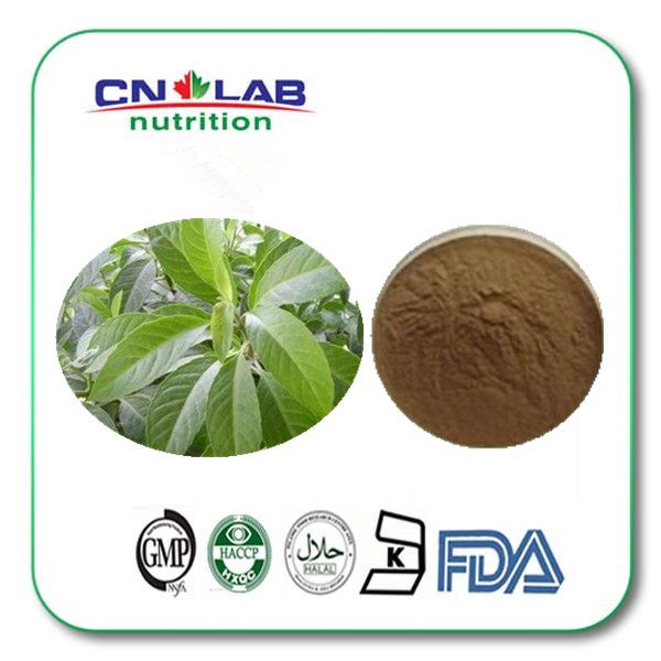 CN LAB ISO Factory Supply High Quality Organic Ashitaba Extract powder