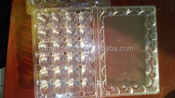 Plastic Clear quail egg tray, egg container, egg box