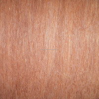 4*8 3*6 4*6 0.33mm furniture walnut burl wood veneer/keruing face veneer sheet/gurjan face veneer
