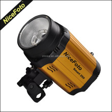 GE-250_ Mini studio strobe flash NiceFoto Photographic Equipment