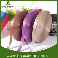 High Quality Fashion Design Nylon Webbing For Dog Collar