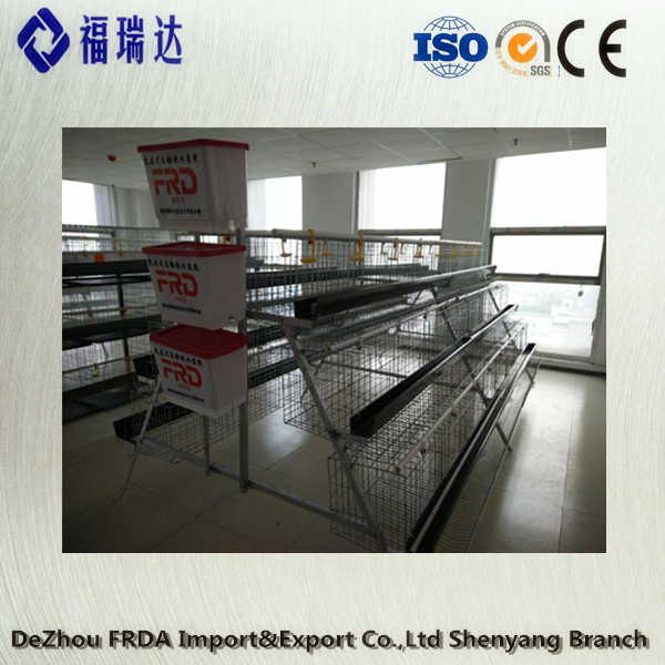 Metal Mink cage/galvanized iron welded wire mesh/The chicken cages(manufacturer in china) FRDA
