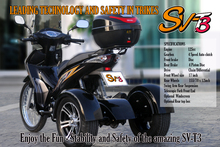 Nice Trike 150cc 200cc Made by Thailand Factory Gas Trike HOT
