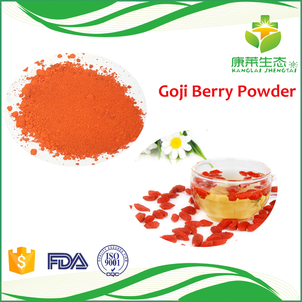 Natural organic goji berry fruit powder supplier with competitive price