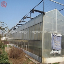 Agriculture polycarbonate greenhouse steel frame to plan flowers