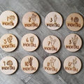 custom laser cut engraved Wooden Monthly Milestone Plaques crafts