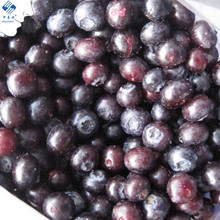 Bulk Frozen Organic Fruit Blueberry Products