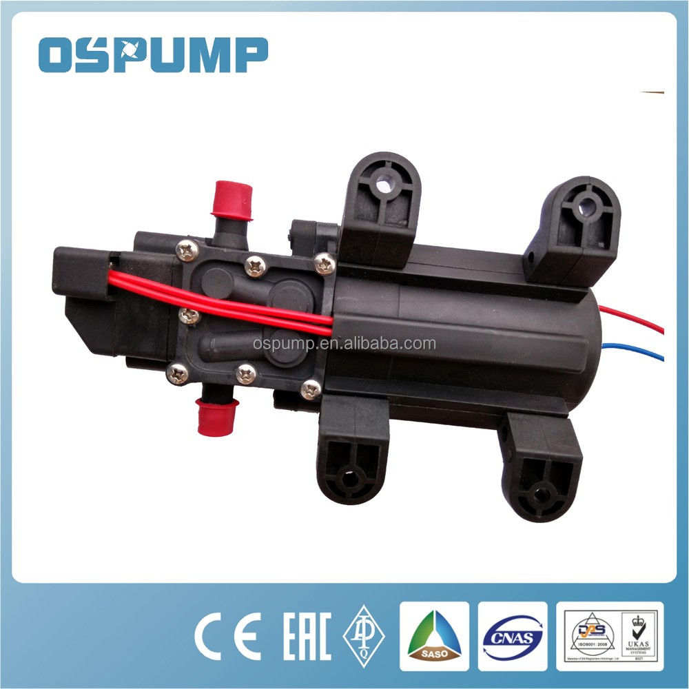 Professional Factory Wholesale Electric Solar Water Pump 12v mini dc pump